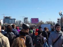 Казаки на госконтрактах: напавшие на митингующих в Москве получили миллионы от мэрии