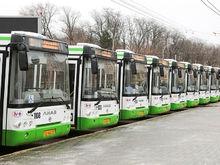 В Ростове на перевозку пассажиров шаттлами в период мундиаля направят 15,4 млн руб.