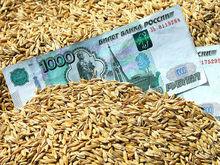 Аграрии Ростовской области стали лидерами по сокращению прибыли