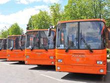 В Нижнем Новгороде впервые представили новую маршрутную сеть