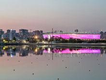 Более 30 тыс болельщиков приедет в Ростов на матч Бельгии и Японии