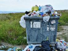 Жители села Лекарственное потребовали передвинуть площадку для мусорного полигона