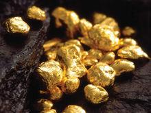 Поиски золота в Ростовской области обойдутся в 200 млн рублей
