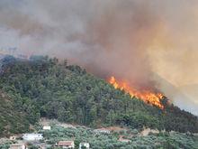Лесные пожары в Греции: более 60 погибших. О чем надо знать туристам?