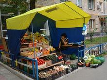 Помощь бизнесу. Цены на размещение ларьков и палаток в Нижнем Новгороде упадут в разы