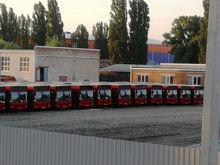Компания из Ижевска хочет заняться пассажирскими перевозками в Ростове