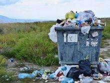 Екатеринбург обложат пятью большими мусорными заводами