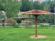 Через тернии в парк: как создать пространство отдыха в Красноярске