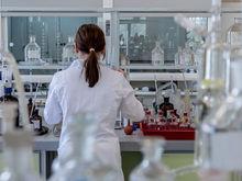 Двум институтам СО РАН потребовался завод органических химреактивов в Новосибирске