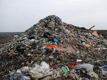 На рекультивацию свалки в районе Левенцовки потребуется 2 млрд рублей