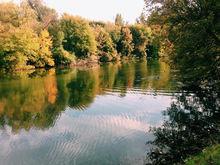 Власти подвели первые итоги проекта реабилитации реки Темерник в Ростове