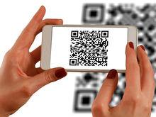 Красноярцы смогут проверять качество продуктов по QR-коду