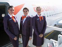 За год работы ростовская авиакомпания перевезла 500 тыс. пассажиров
