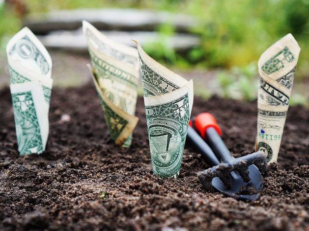 «Легкие деньги» — это мышеловка. Как выгодно пристроить свои накопления?