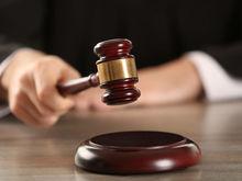 Компания Элады Нагорной выиграла суд у администрации Нижнего Новгорода