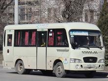В двух маршрутках Ростова ввели дифференцированную оплату проезда