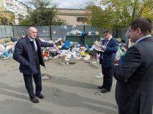 На борьбу с мусорным коллапсом из бюджета взяли еще 20 млн руб.