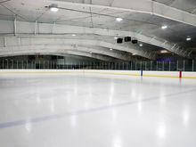 Рене Фазель в октябре приедет в Новосибирск на закладку фундамента ледовой арены