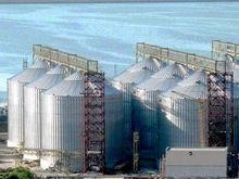 Ростовский зерновой терминал хочет обменять изъятый участок на 21 млн рублей