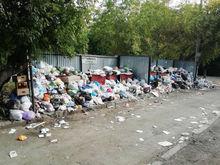 Прокуратура заставляет Дубровского и его команду остановить мусорный коллапс