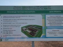 В Ростовской области начали строительство молочной фермы за 2 млрд рублей.