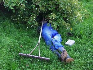 «Работники словно сонные мухи? Пора поставить кровати в кабинетах». Что дает офисный сон