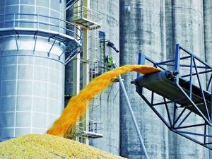 Россельхознадзор хочет закрыть нелегальные площадки по отгрузке зерна в Ростовской области