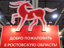 Финансирование туризма в Ростовской области увеличат в 2,5 раза