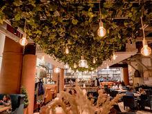 Новосибирский ресторатор откроет сразу несколько заведений в Екатеринбурге