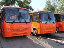 13 автобусов арестовано у частного перевозчика в Нижнем Новгороде