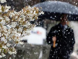 В Ростове ожидается небольшое потепление и дождь со снегом