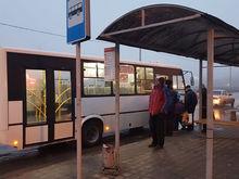 Ростовские власти не выявили нарушений в работе транспорта на Темернике