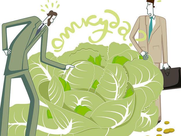 Росфинмониторинг намерен следить за разводами чиновников и ограничить оборот наличных