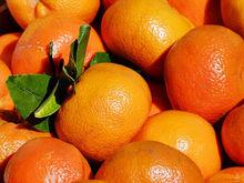 Мандариновый обзор: в Сибири в канун праздника снизились цены на мандарины