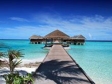 Отпуск после Нового года: выгодные варианты «зимнего пляжа» с вылетом в начале января