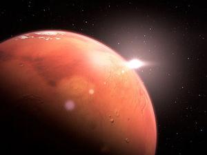 Толстые кости и атрофированный иммунитет. Что ждет будущих колонизаторов Марса?