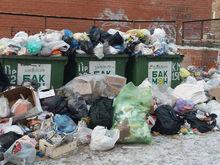 «А где бачки?», — как красноярские депутаты разбирались с мусором