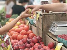 Дорожает все: за месяц в регионе выросли цены на продукты