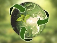 Комитет по экологии появится в Новосибирске