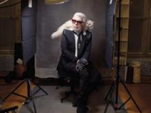 Состояние знаменитого модельера Лагерфельда перешло к его кошке. Она заработала миллионы