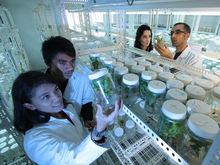 Заксобрание потребовало заменить руководство новосибирского Биотехнопарка