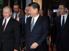 Артур Никитин получит госгарантии для гостиницы, где в 2020 г. поселится Си Цзиньпин