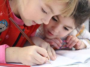 «Школа должна делить детей по способностям. Иначе государство теряет слишком много»
