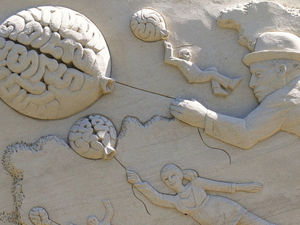 Куча идей перед сном и пустота в голове утром? Как заставить мозг работать в нужное время