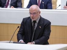 Автор законов о суверенном интернете и оскорблении власти увеличил доход в 4 раза