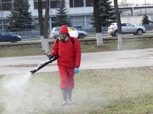 В Нижнем Новгороде все зеленые зоны пройдут противоклещевую обработку