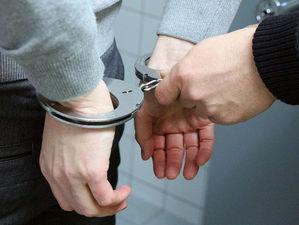 Экс-зама Михаила Юревича, обвиняемого в мошенничестве, арестуют по прибытии в Россию