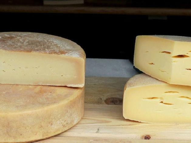 Агрогиганты предложили запретить россиянам ввозить сыр и колбасы из-за границы