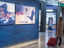 В Красноярском аэропорту открылась выставка, показывающая красоты Сибири