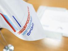 Лидер во Фронте. В Нижегородской области выбрали нового главу исполкома ОНФ